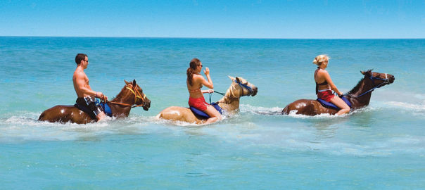 Horseback Ride 'n' Swim in the Caribbean sea, a speciality of Jamaica