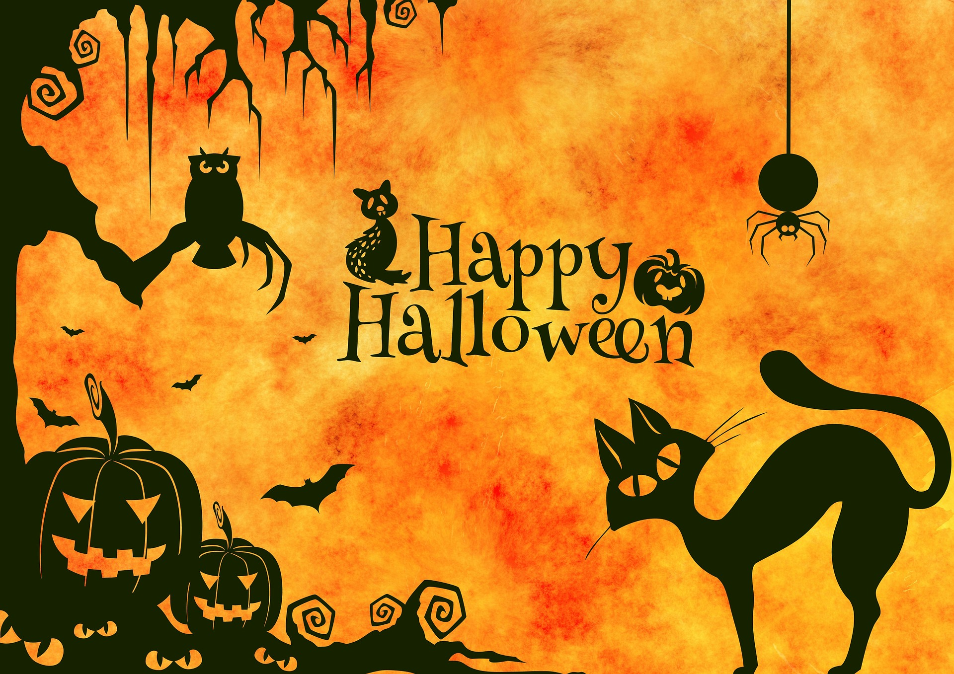 city of joy gears up for halloween | media india group