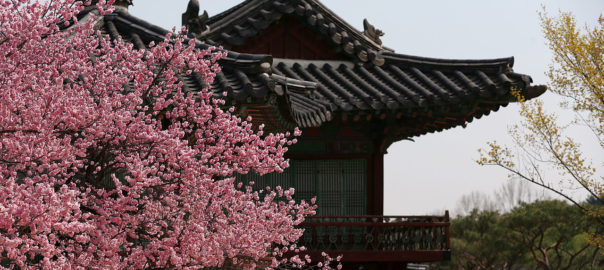 Korean Festival scheduled to be held later this month aims at promoting tourism in South Korea