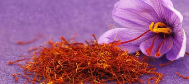"Saffron is derived from the flower of Crocus sativus, commonly known as the ""saffron crocus"""