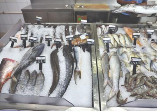 Marine Fishing Bill 2021: Tamil Nadu fishermen remain firmly opposed