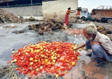 Sordid Tale of a Food Wasteland
