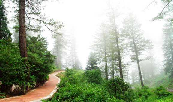 Daringbadi mountain trail