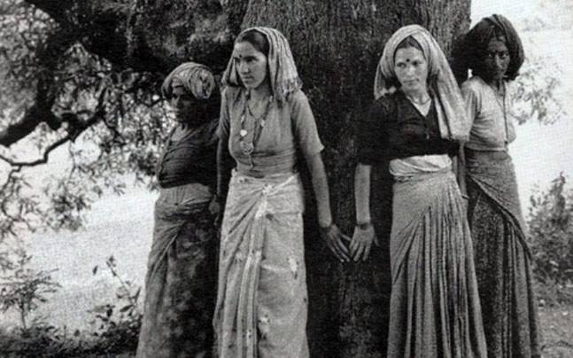 Chipko Movement: Google marks 45th anniversary of the forest conservation initiative