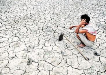 Indian farmer suicide rate higher in fertile regions