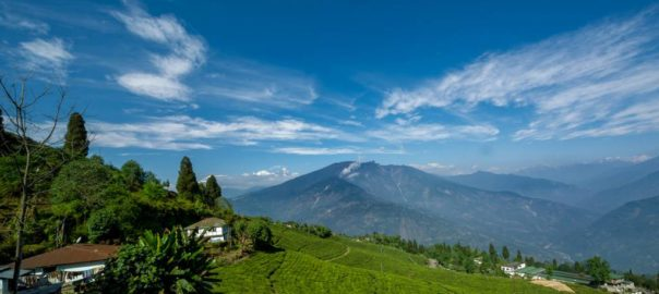Pelling Photo: North Bengal Tourism