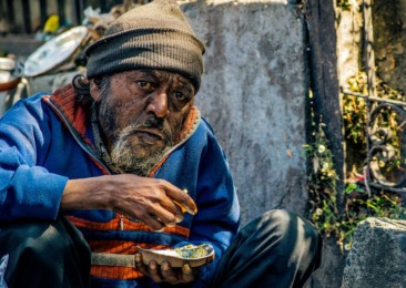 Food scavengers in India: Individuals, restaurants to the rescue