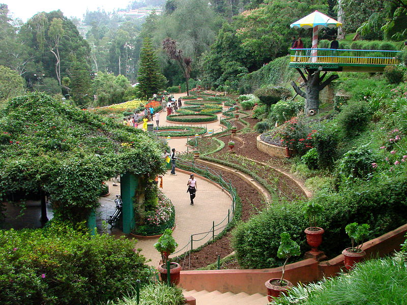 Government Botanical Garden in Ooty