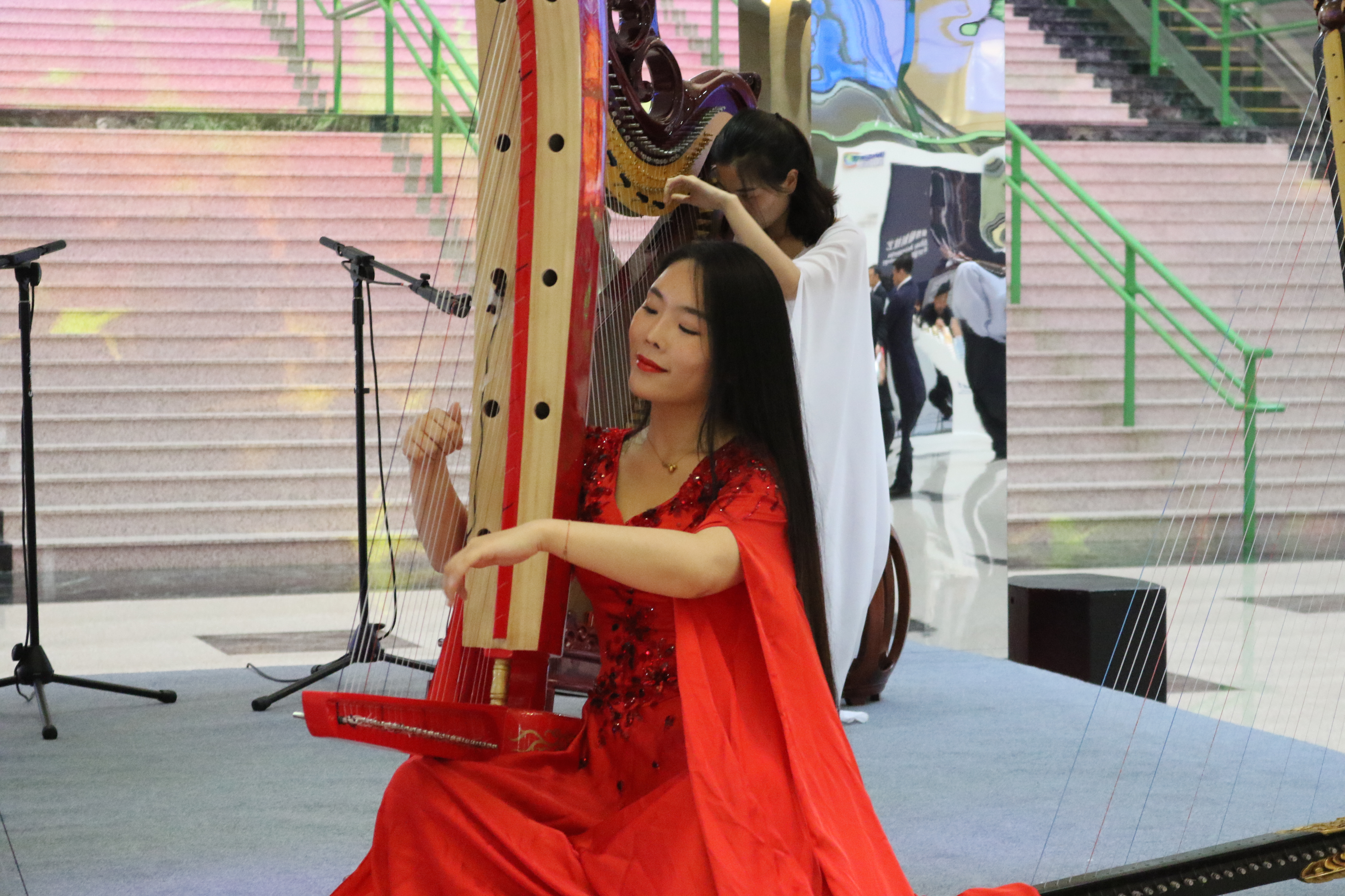 Harp Player at the International Mayors' Forum