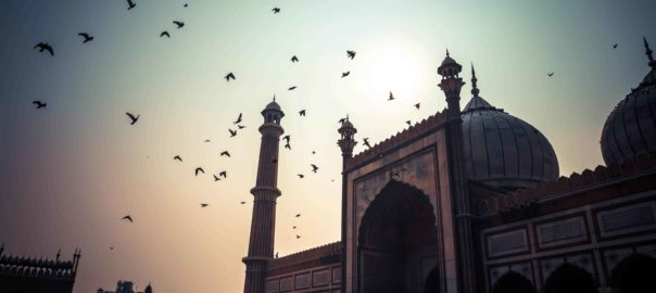 Glorious history of Delhi - Jama Masjid (mosque)A mosque whose grand gateways were once the lifeblood of the city