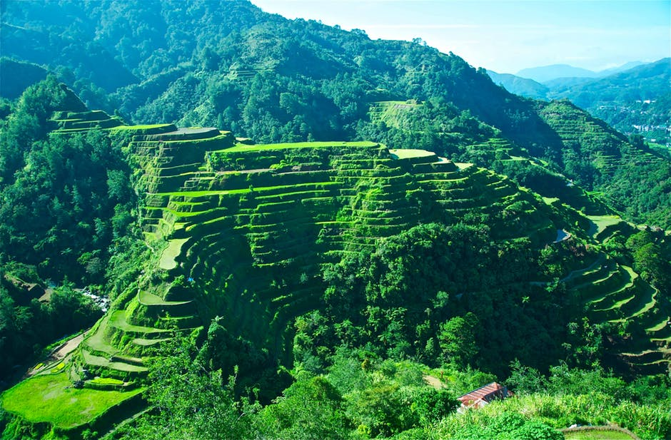 The Banaue Rice Terraces, Philippines