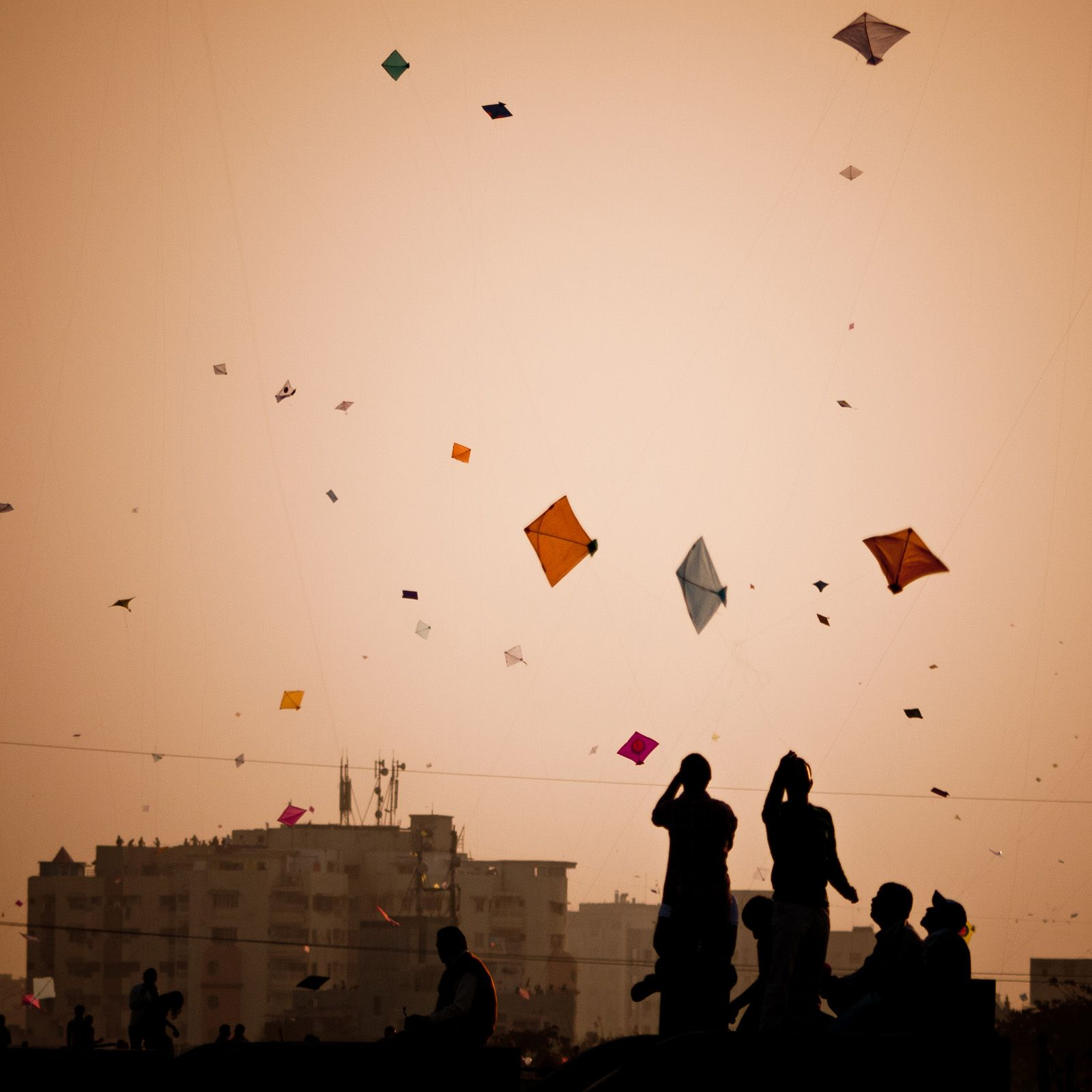 the culture of kite flying in india  media india group kite flying in india is more than just a craft
