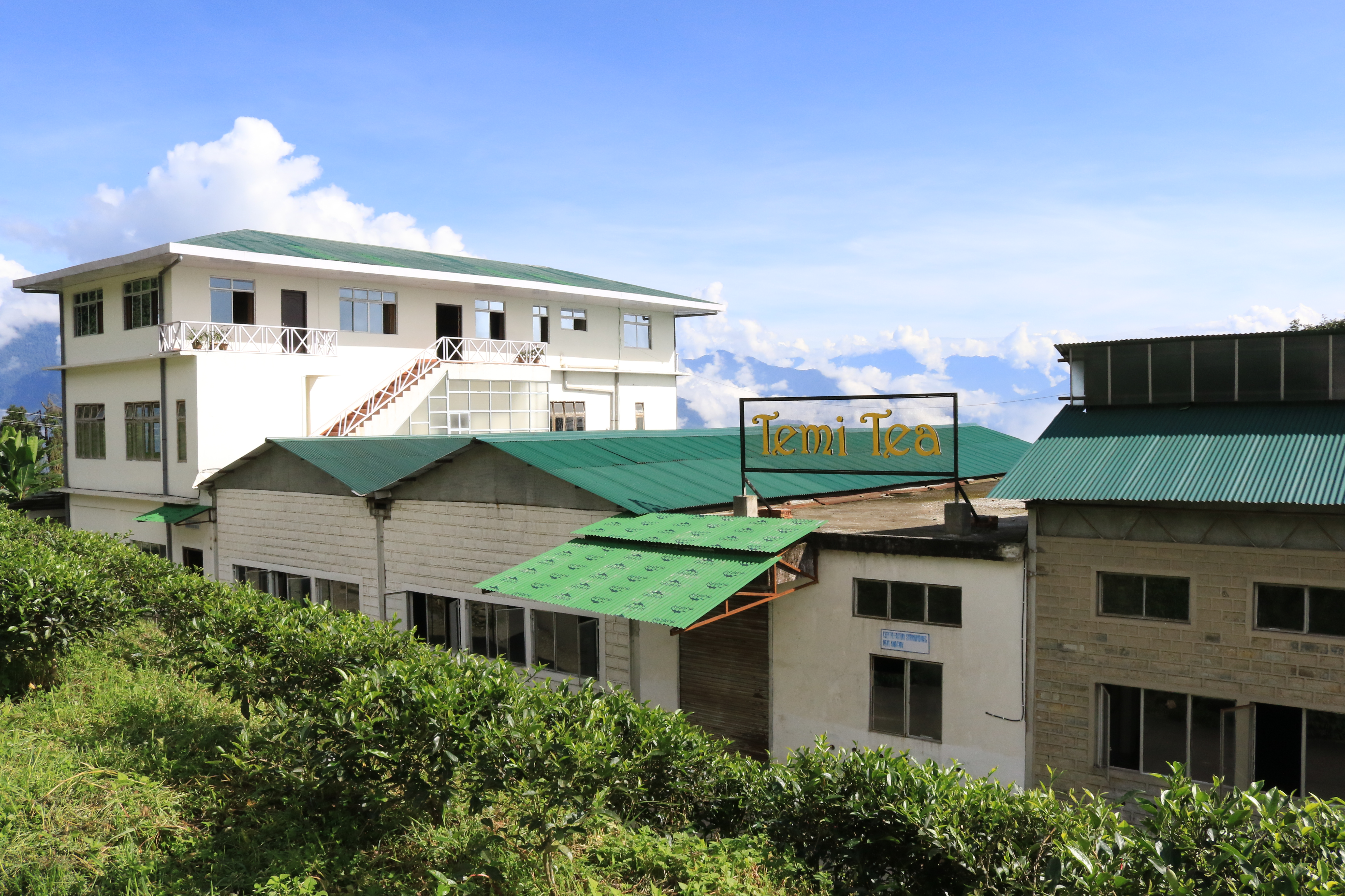 Temi tea offers accommodation options within the tea estate and has also developed various homestay facilities around