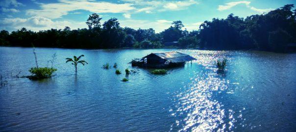 Assam floods, circa 2015