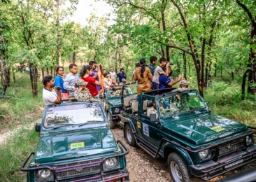 Pench: chasing fleeting wildlife wonders