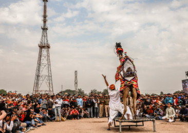The international camel festival in Bikaner