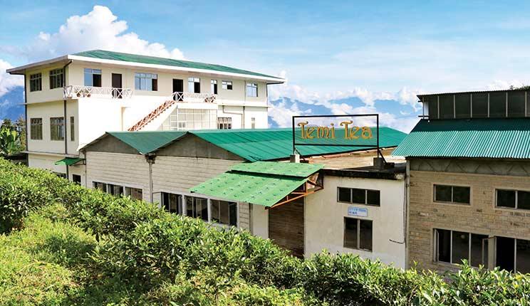 Área de alojamiento en la Temi Tea Estate;
