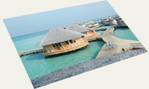 Postcard Maldives