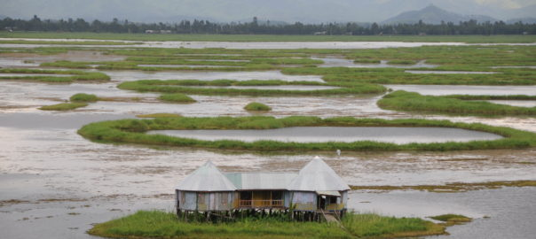 A phum sang on Loktak Lake