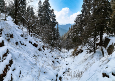 Tirthan Valley- A slice of paradise in Himachal Pradesh