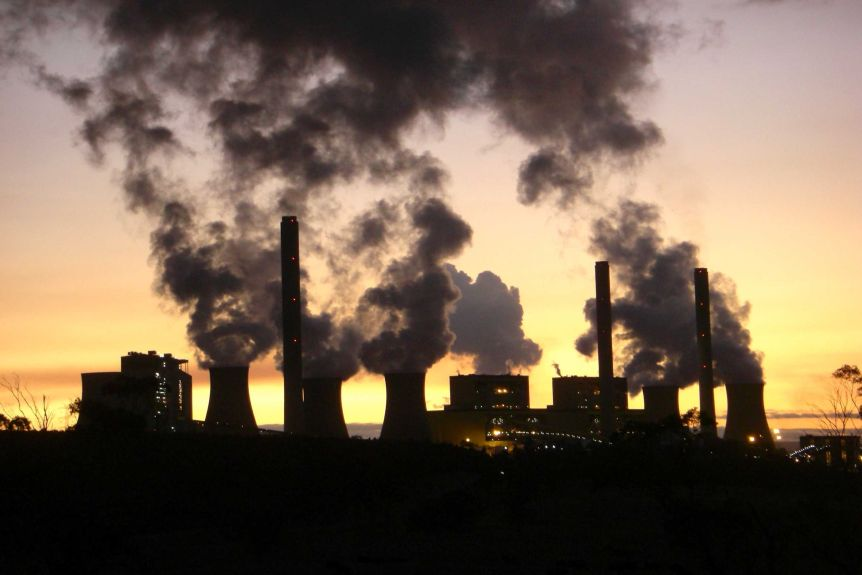 Educational institutes pledge for carbon neutrality