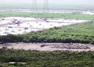 World Wetlands Day: Construction equals destruction