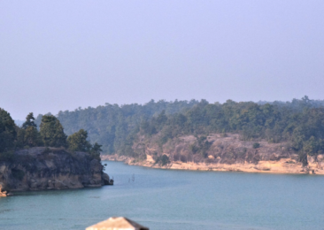 Forest Act amendments strike at heart of Indian forests